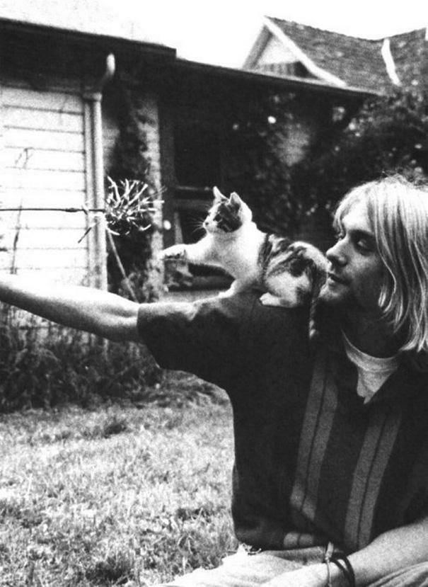 Kurt Kobain kitten Quisp