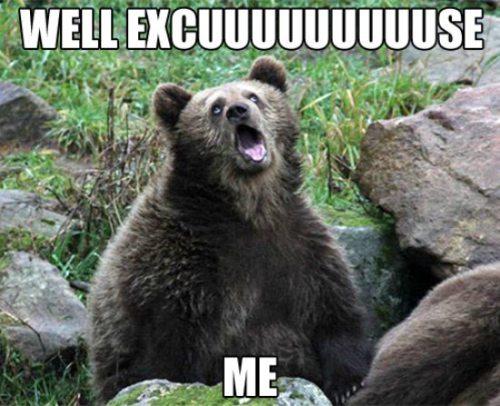 excuse me bear