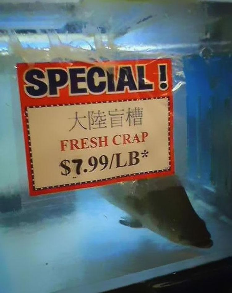 special fresh crap crabl funny chinese