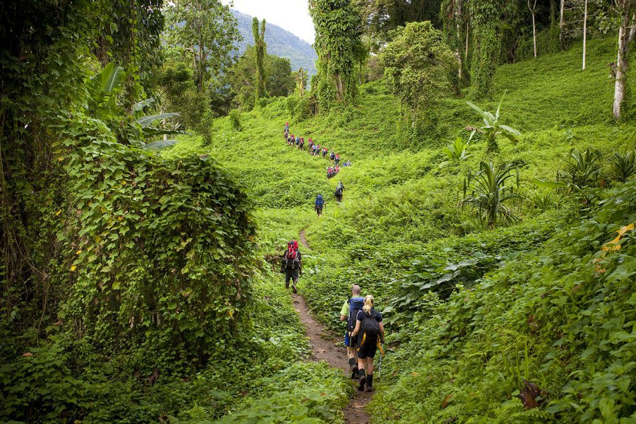 Kokoda track. Papua New Guinea