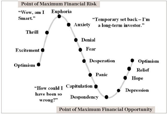 Emotion in Risk vs Opportunity
