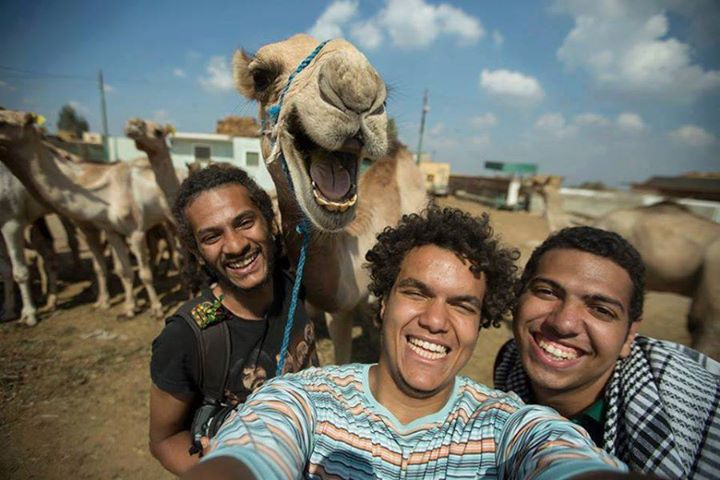 camel dudes friends smiling laugh laughing funny faces tbb